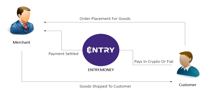 ENTRY BUSINESS MODEL IN DETAILS