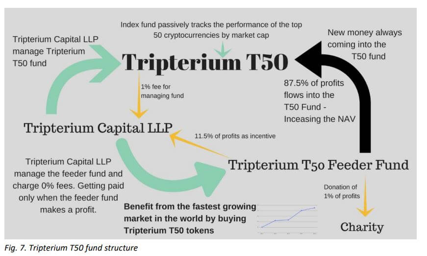 Tripterium T50 fund structure